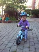 Dikte Cykel.JPG